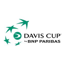 Puchar Davis`a